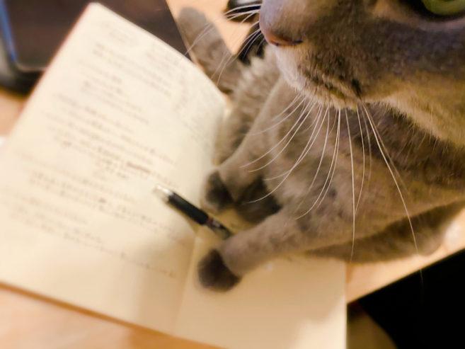 B5サイズのノートと我が家の猫
